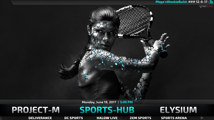 sports hub section