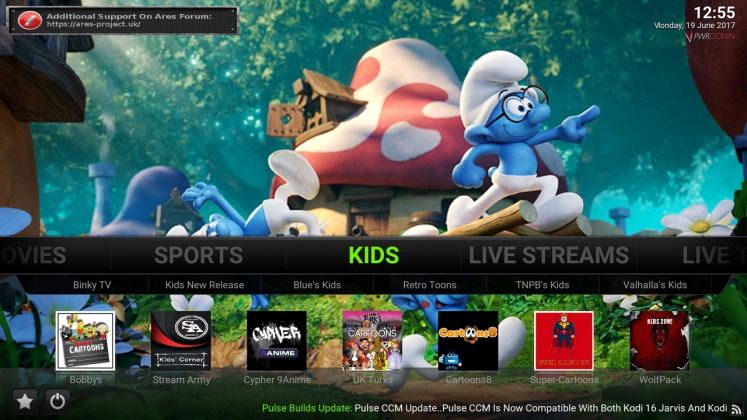Kodi Pulse CCM Build Kids