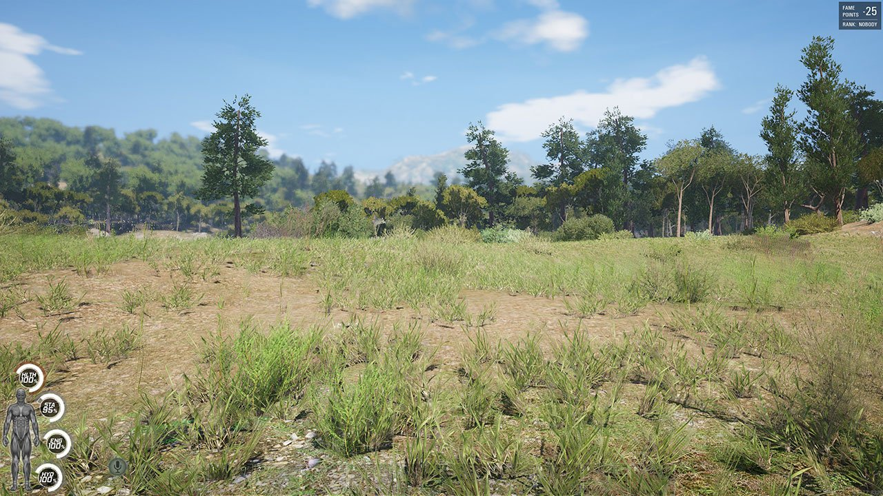 first person view scum