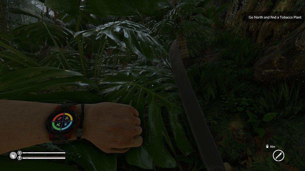 smart watch green hell
