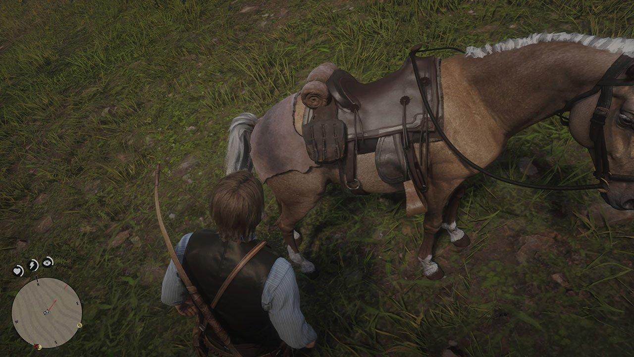 horse pelt on horse
