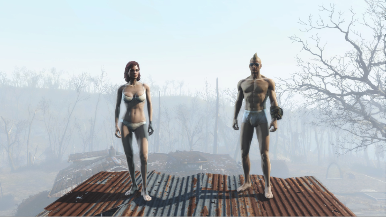 Best Fallout 4 Nude & Adult Mods for PS4 in 2019 - PwrDown