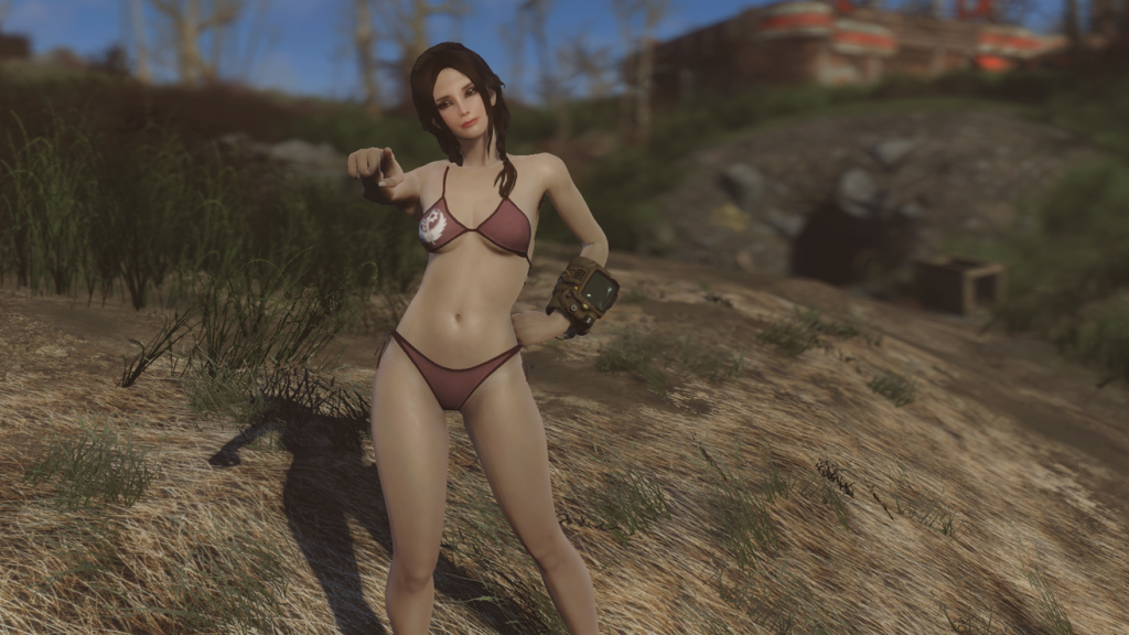Best Fallout 4 Nude & Adult Mods for Xbox One in 2019 - PwrDown
