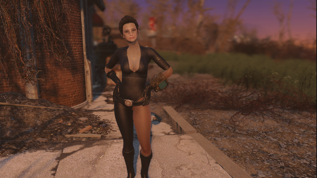 Fallout 4 xbox one nude mods