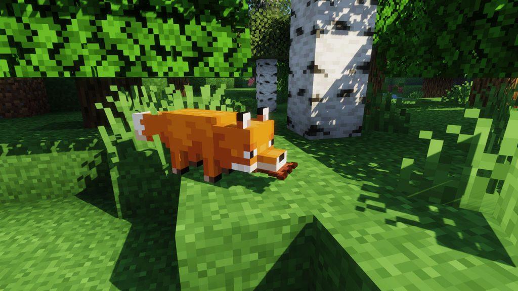 fox holding items